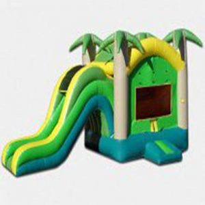 Jump-n-Slide Tropical Combo (Dry)