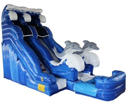 20′ Dual Lane Dolphin Waterslide